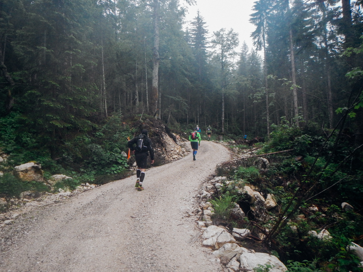 Die ersten 13 Kilometer sahen ungefähr so aus.