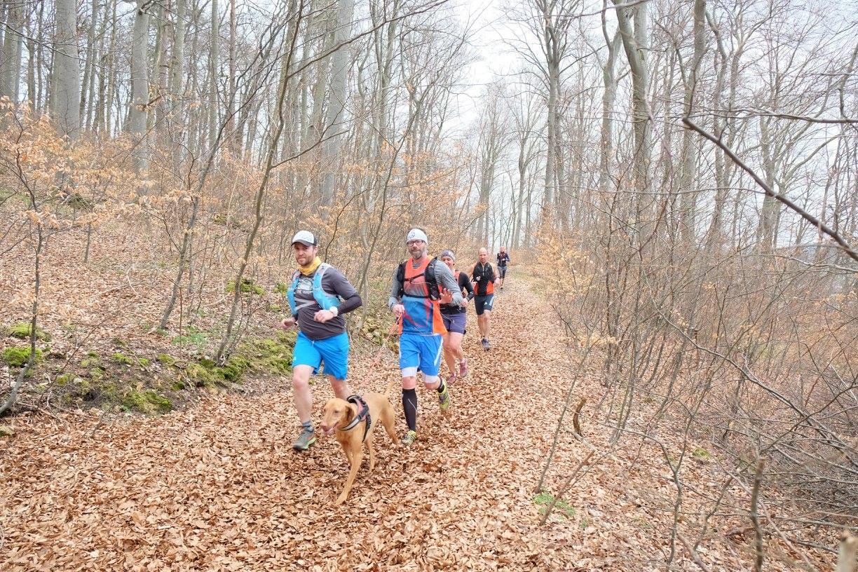 Bild: Trail Magazin
