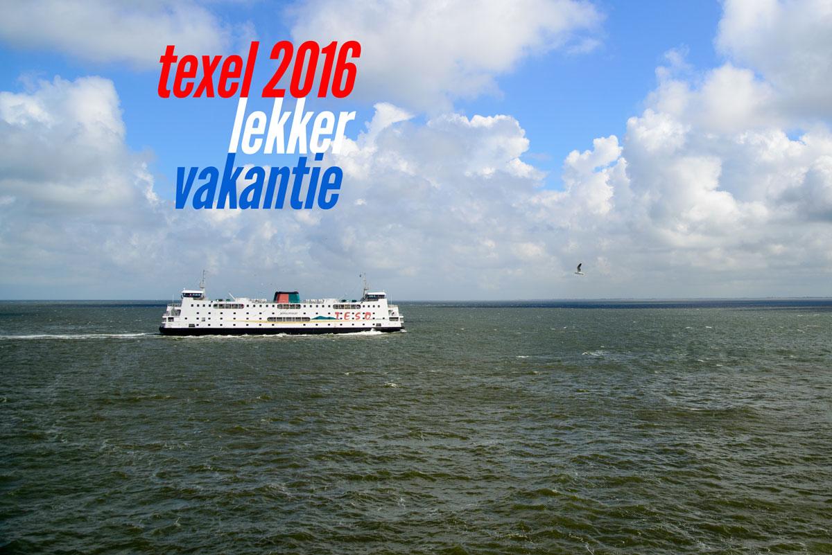 texel2016fls